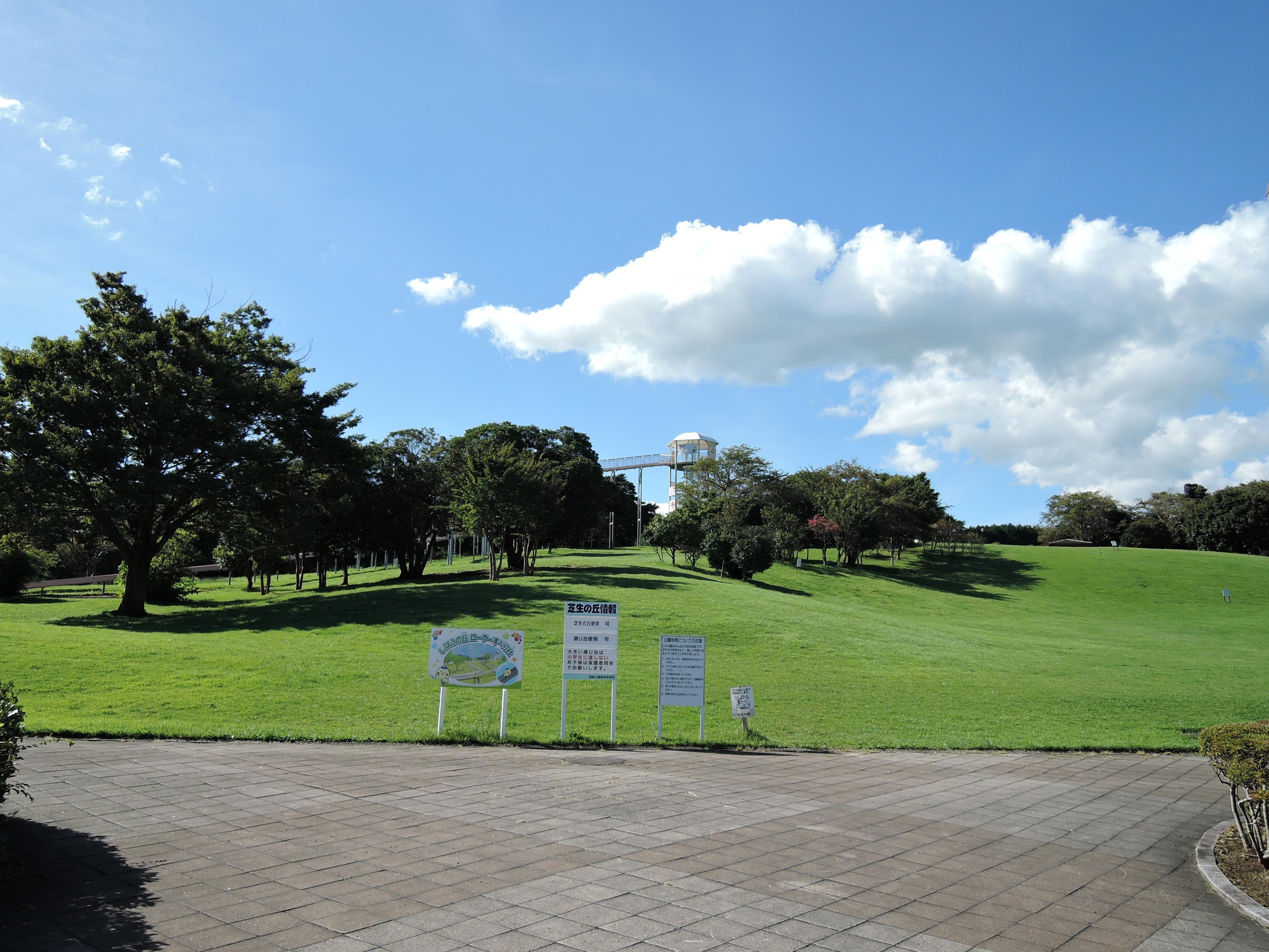 芝生の丘の画像